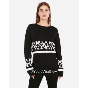 Animal Print Stripe Cropped Sweater